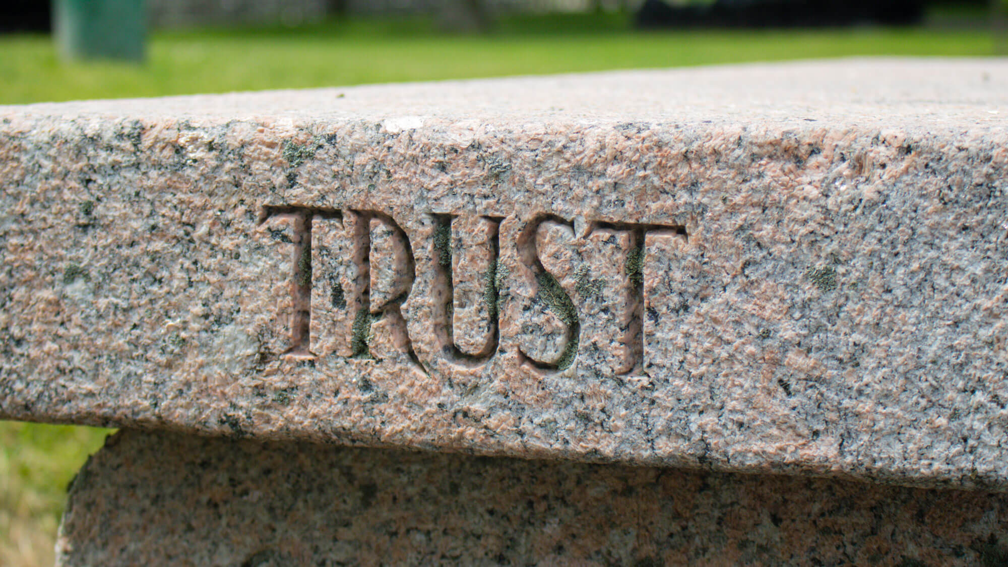 Trust drives innovation and financial results