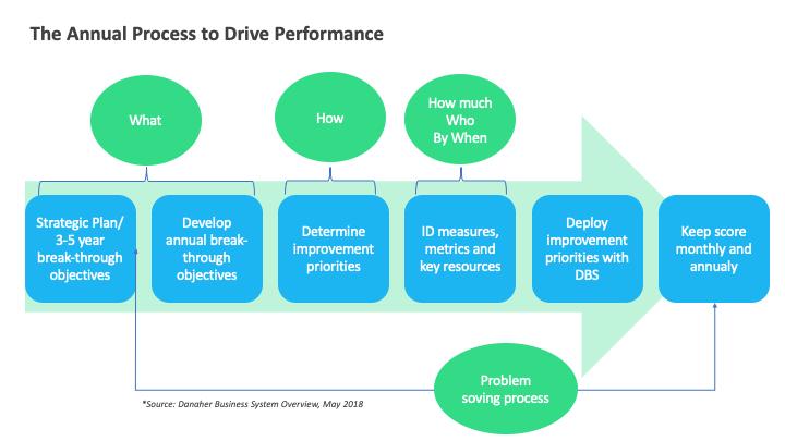 DBS annual process