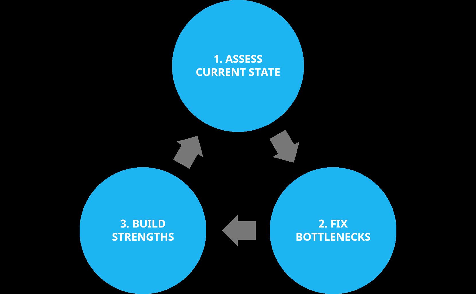 assess-fix-build-1
