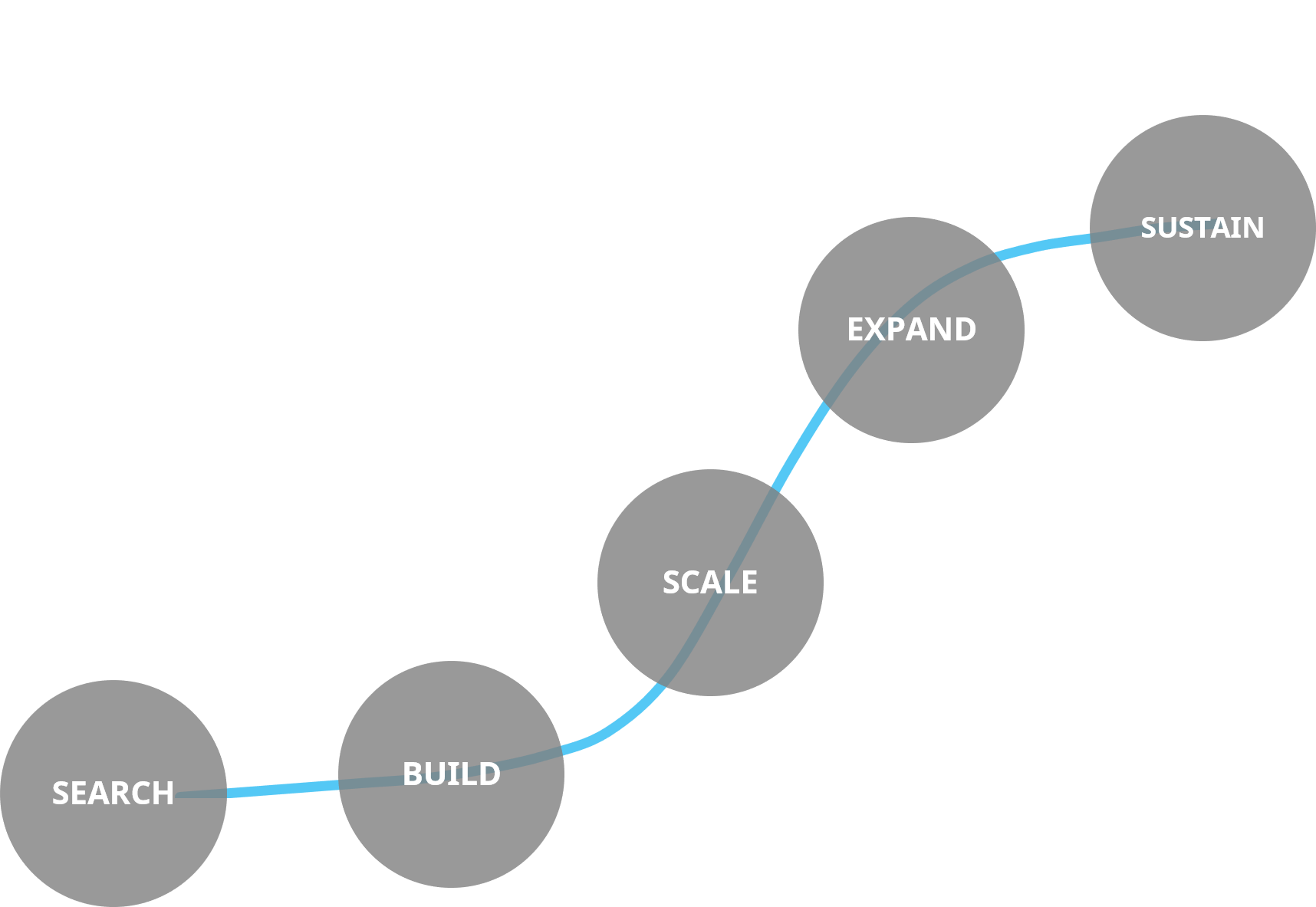 search-build-scale-expand-sustain