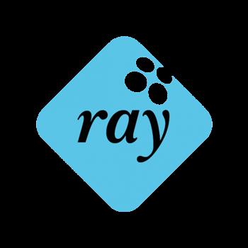 RAY reference logo Viima